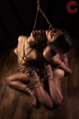 Gorgone and Fuoco doubly bound on the floor, mouth rope.