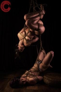 Gorgone and Fuoco double shibari bondage interconnected suspension.