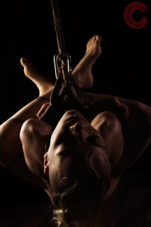 Shibari bondage ebi suspension