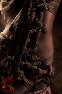 Intricate shibari teppou bondage