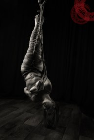Shibari inverted suspension