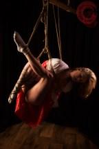 Shibari suspension bondage with Artemis Fauna