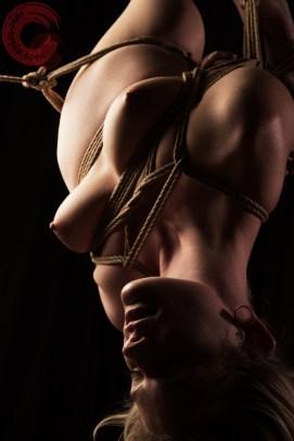 Inverted suspension bondage, Semi nawa with Artemis Fauna