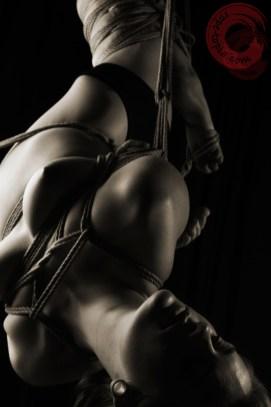 Shibari inverted torture suspension bondage.