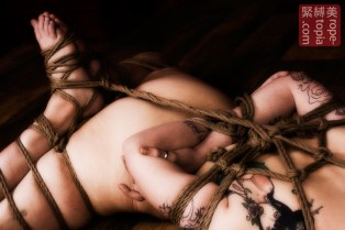Closeup shibari bondage