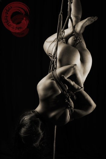 Beautiful twisted shibari inverted suspension bondage