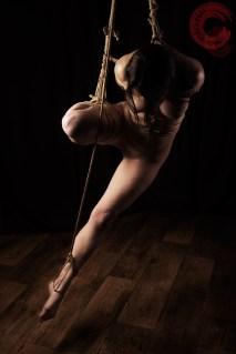 Shibari suspension torture bondage