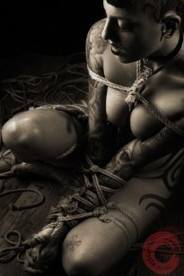 Miss Bliss Kinbaku