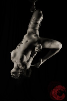 Shibari, bondage, suspension, inversion, futomomo
