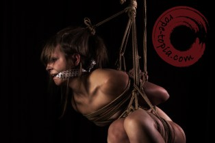 Side suspension, yoko tsuri shibari