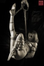 Face up suspension bondage with futomomo shibari.