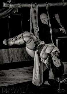 Wet Tenugui Flogging in intense inverted shibari suspension in Jamaica