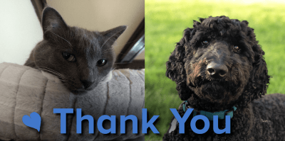 grey cat and black dog above the words Thank you