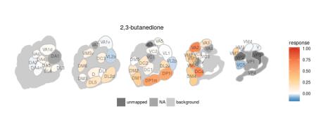 Ensemble response of 2,3, butanedione