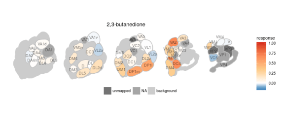 Ensemble response of 2,3, butanedione