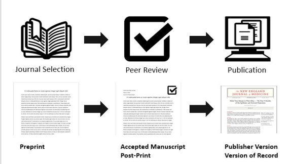 The different types of articles. Preprints, then Accepted Manuscript or Post-Print after Peer Review, then Publisher Version or Version of Record after Publication