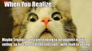 Trumps A Liar Right?