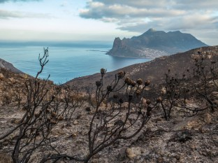 Hiking up Chapman's Peak above Hout Bay