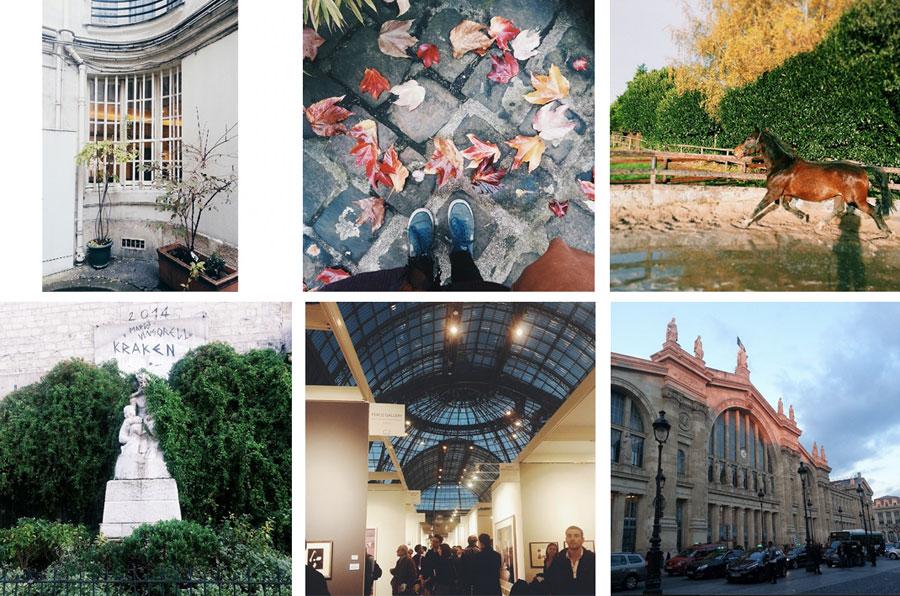 November-video-article-vignette-instagram