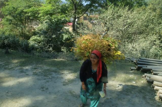 route de Badrinath-28