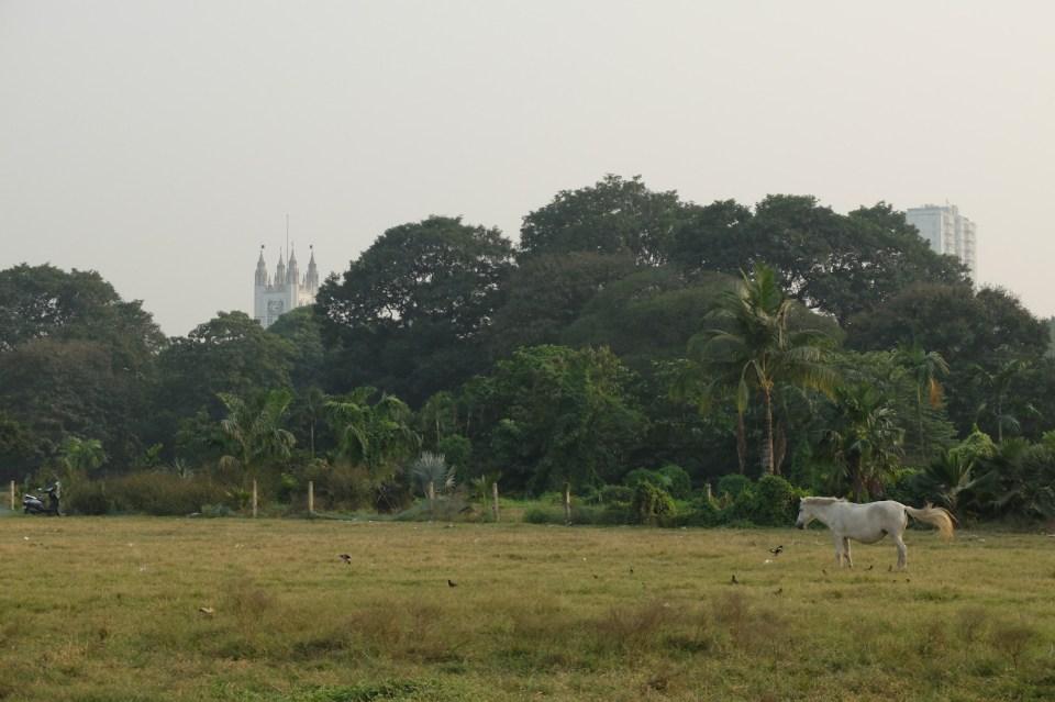 Kolkata Calcutta-14