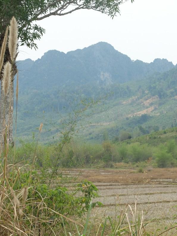 J11 Laos-2