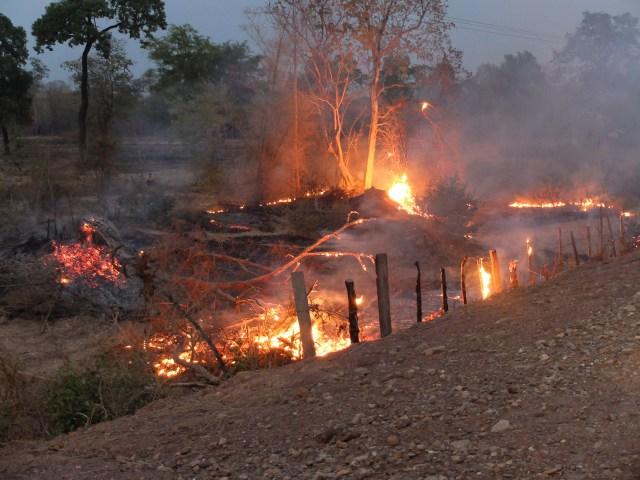 feu de foret laos