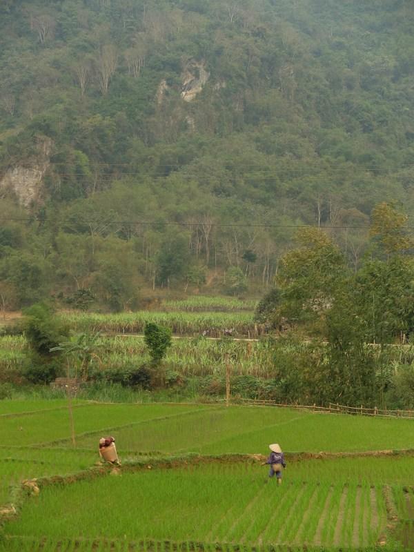 j3-vietnam-5.jpg.jpeg