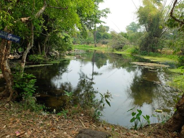 sud laos-6