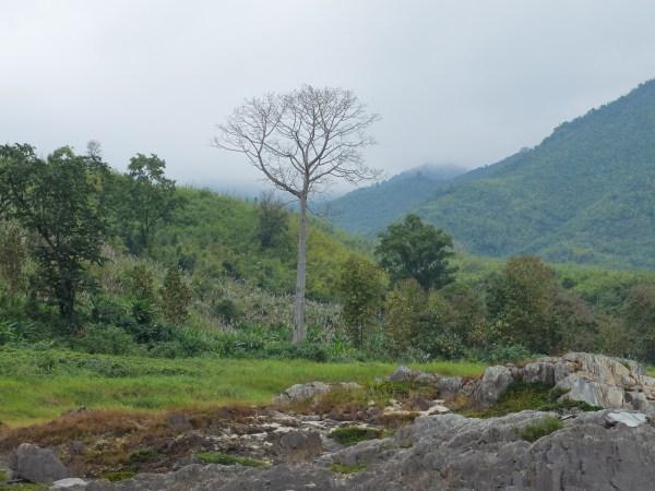 Première rencontre avec le Laos et le Mekong à Chiang Khong