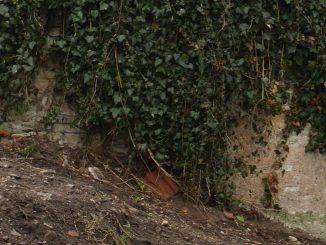 la tour médiévale de rosieres aux salines