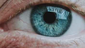 Soolantra on eyelids for ocular rosacea?