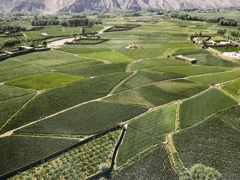 Stanworth Afghanistan 50K 5