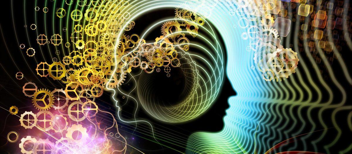You are currently viewing Você quer ter um cérebro básico ou um super cérebro?