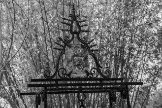 Rocha_4March17_Bontantic Garden 160001