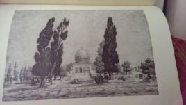 Percy Smith Palestine (11)