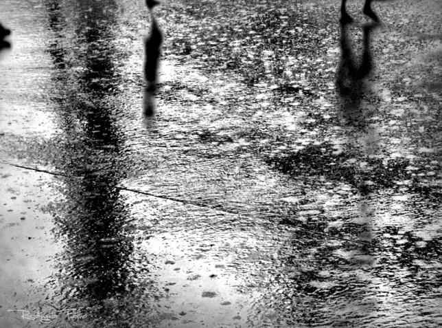 Passos Na Chuva©Rosângela Fialho Photography