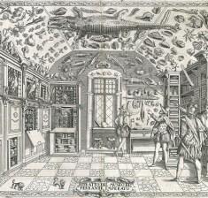 Inks, Curios & Divination