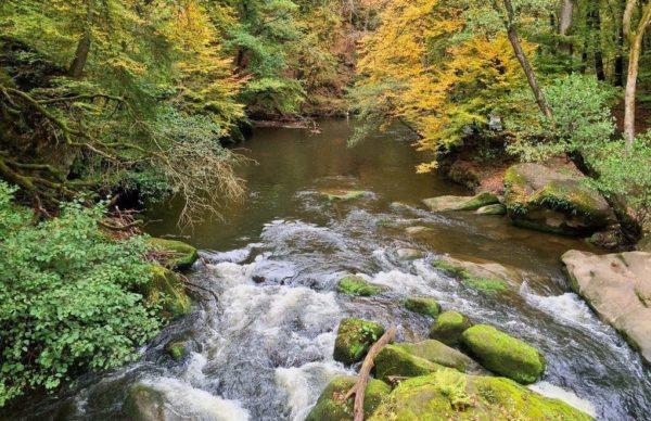 Irreler wasserfälle Teufelsschlucht Eifel