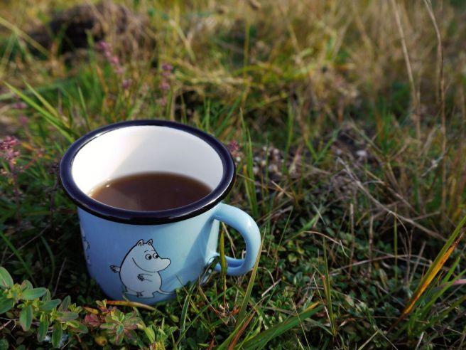 Heißer Tee für unser Picknick