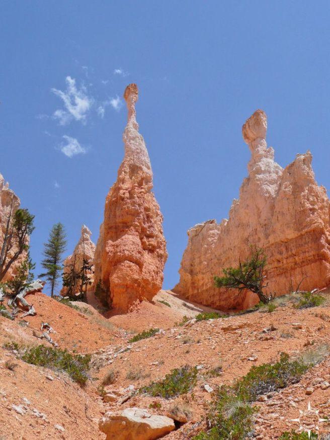 Bryce Canyon (13)_lzn