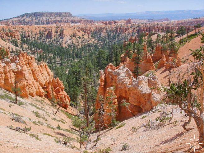 Bryce Canyon (38)_lzn