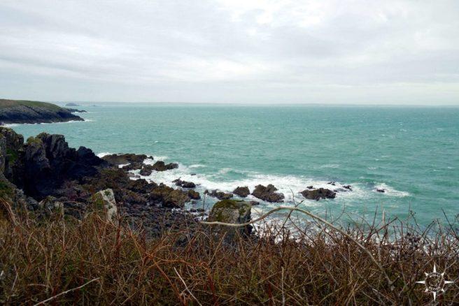 Rosas-Reisen-Roadtrip-Wales-Kuestenwanderung-St-Davids (5)