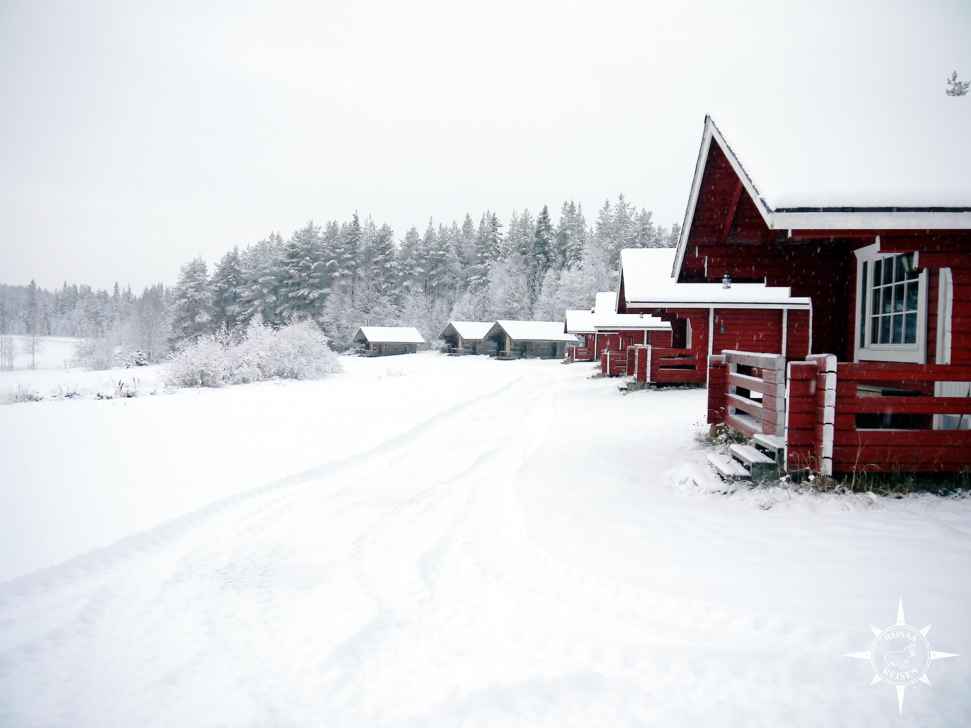 Rosas-Reisen-Farmstay-Finnland-Auslandsaufenthalt