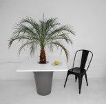 Table pot
