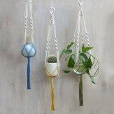Portes plantes