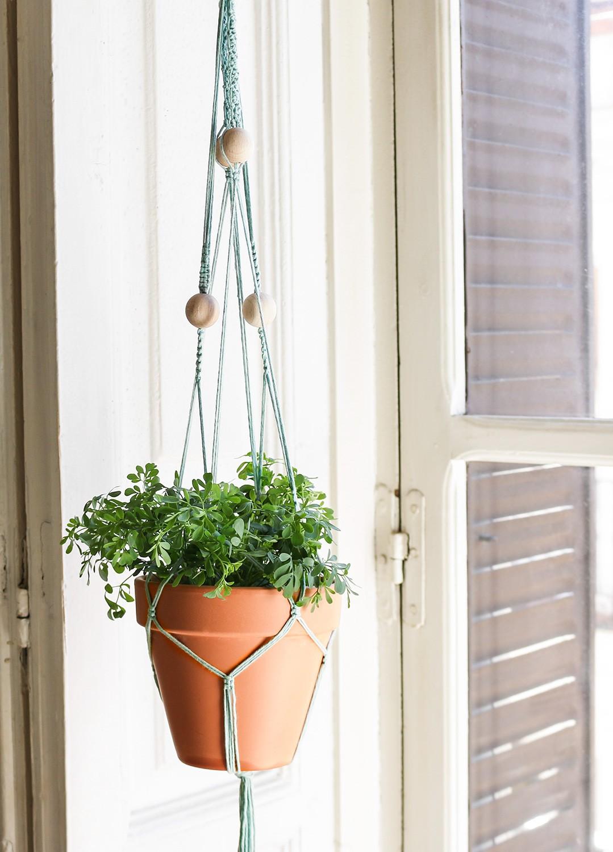 macrame-kit-coton-agave-plant-hanger-1