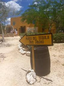 tequila-sign