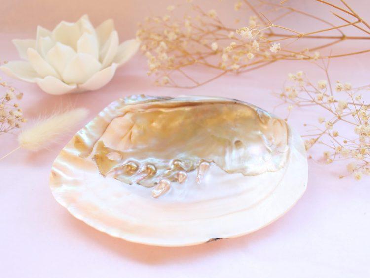Coquillage de nacre avec perles