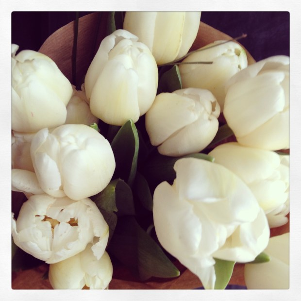 tulips, spring flowers, canadian blogger, lifestyle and fashion, style and fashion,
